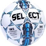 Мяч футбольный Select Numero 10 IMS арт.810508-102