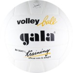 Мяч волейбольный Gala Training арт.BV5041L