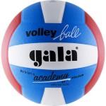 Мяч волейбольный Gala Academy арт.BV5181S