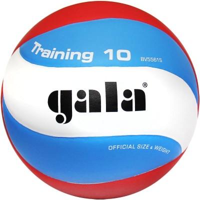 Мяч волейбольный Gala Training 10 арт.BV5561S