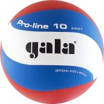 Мяч волейбольный Gala Pro-Line 10 арт.BV5581S
