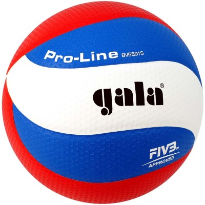 Мяч волейбольный Gala Pro-Line 10 FIVB арт.BV5591S