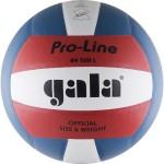 Мяч волейбольный Gala Pro-Line Colour арт.BV5211L