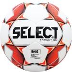 Мяч футбольный Select Target DB IMS (International Matchball Standard) арт.815217-106