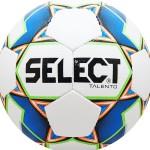 Мяч футбольный Select Talento 4 арт.811008-102