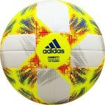 Мяч футбольный Adidas CONEXT19 Top Training (FIFA Quality) DN8637