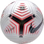 Мяч футбольный Nike Premier League Flight (FIFA Quality Pro) (Официальный мяч Английской Премьер-Лиги) CQ7147-100
